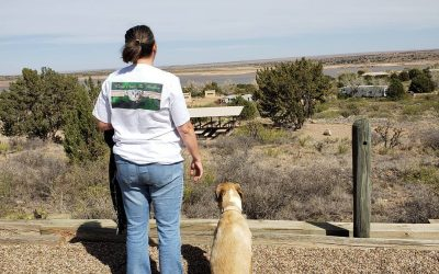 New Mexico State Park Series