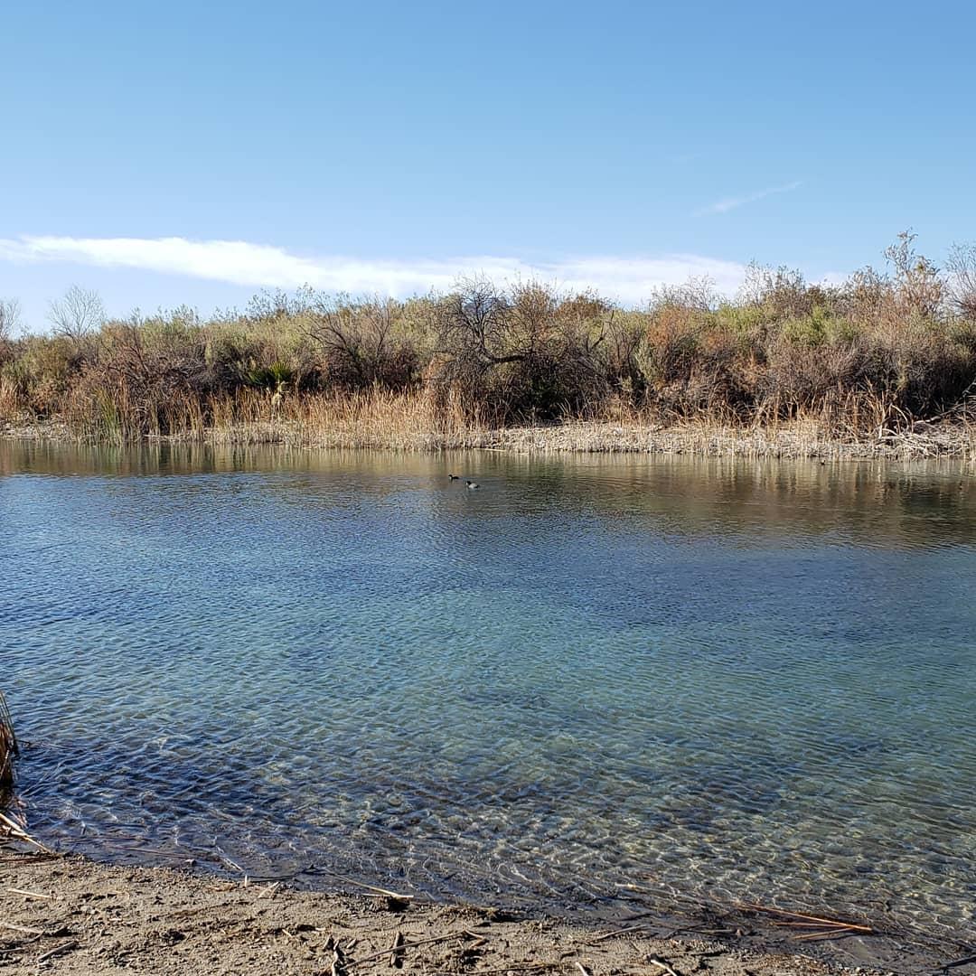 Camp Davis Park ~Bullhead AZ/Laughlin NV