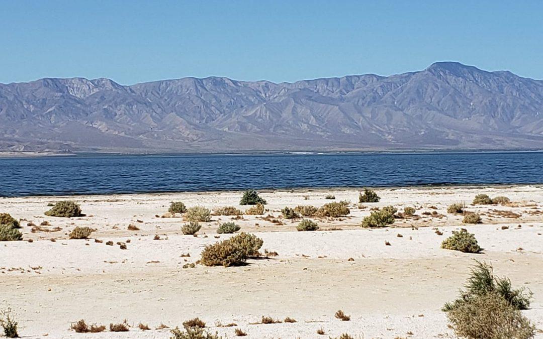 Spring Break 2021 – Part 3: Salton Sea