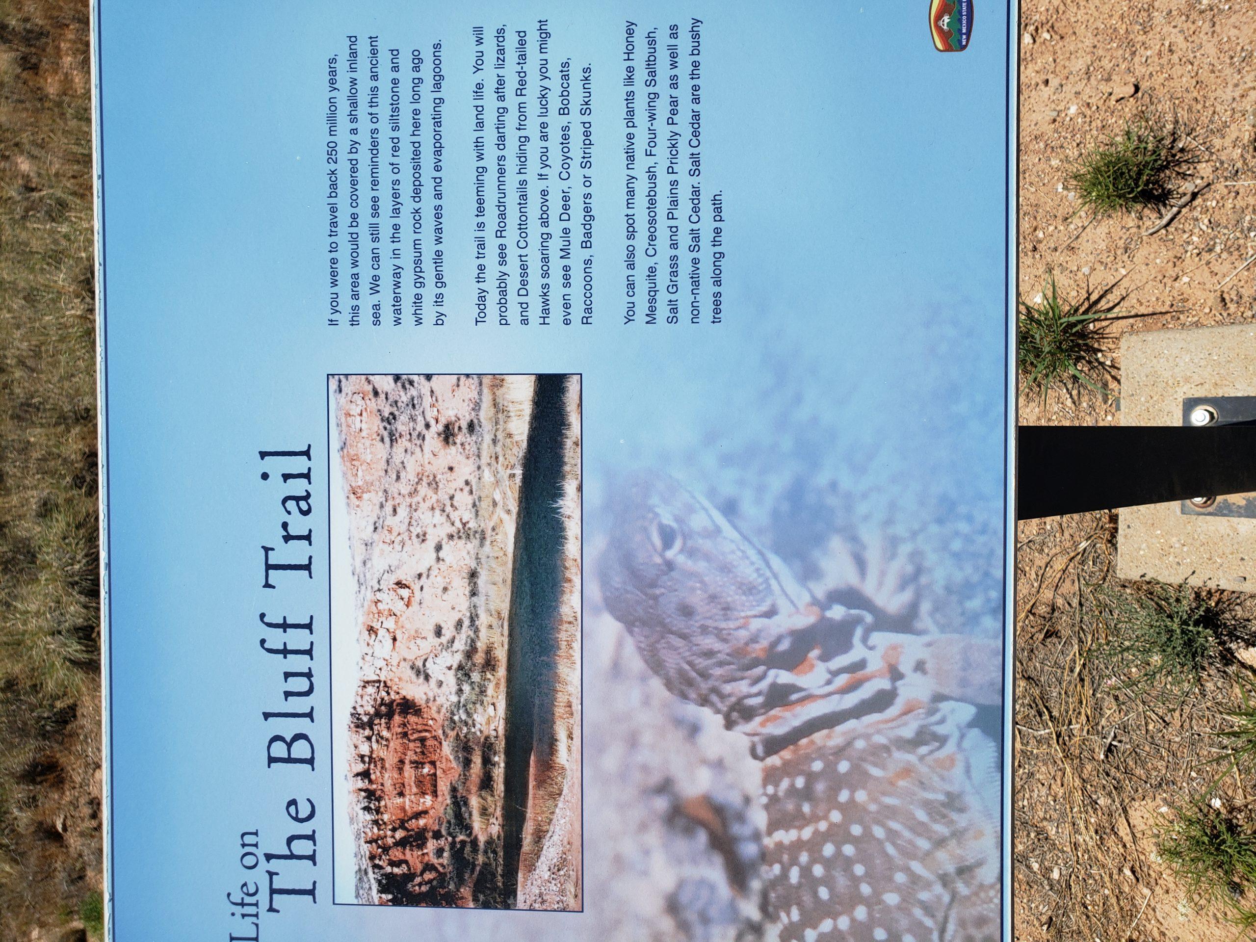 Bottomless Lake Bluff Trail